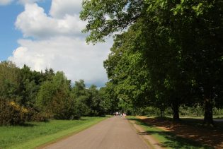 Road from Blacknest Gate to Guards Polo Club, Virginia Water