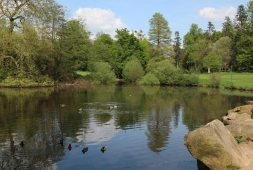 Wick Pond, Virginia Water
