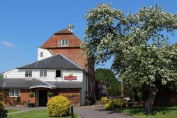 May tree, The Mill at Elstead, Elstead