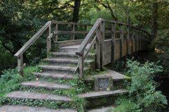 Stepping Stones Footbridge, Burford Meadow, below Box Hill