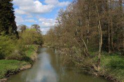 River Mole, Painshill Park, Cobham