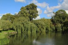 Garden, bank of River Thames, The French Horn Hotel, Sonning