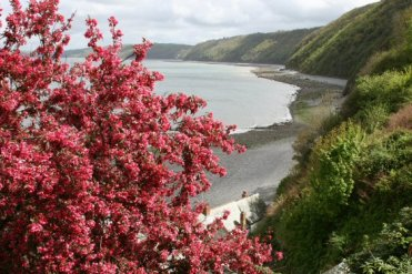 Bideford Bay, from The Look-out, Clovelly