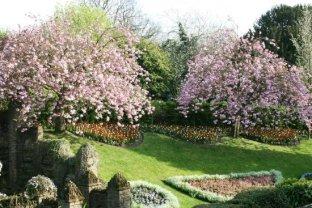 Castle Grounds, Guildford