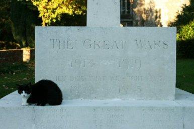 Cat on War Memorial, St. Peter's Churchyard, Bishop's Waltham