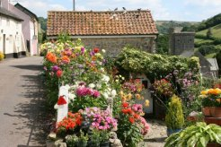 Cottage garden and St. Winifred's Church, Branscombe