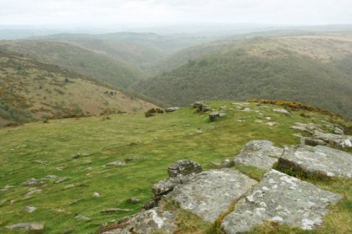 Dart Valley, from Sharp Tor, Dartmoor
