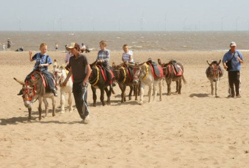 Donkey Ride, Skegness