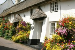 Longview Cottage, Church Row, Branscombe