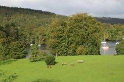 Picnic area, Fell Foot Park, Newby Bridge, Lake Windermere