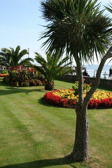 Promenade garden, Torquay