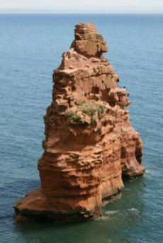 Sea stack, Ladram Bay, near Sidmouth