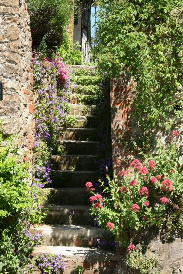 Steps, Barton Cottage, Amberley