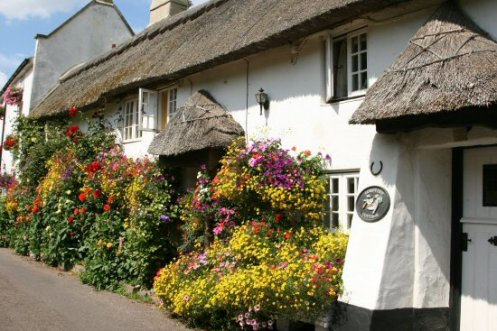 Thatched cottages, Church Row, Branscombe