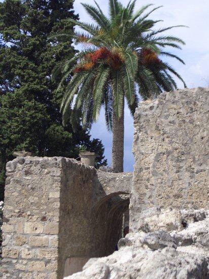 House of Faun Garden, Pompeii