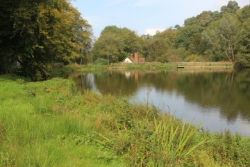 Mill pond, Friday Street, Dorking