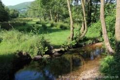 Moorland stream, Widecombe-in-the-Moor