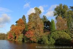 Upper Woman's Way Pond, Sheffield Park Garden