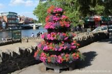 Flower display, Windsor