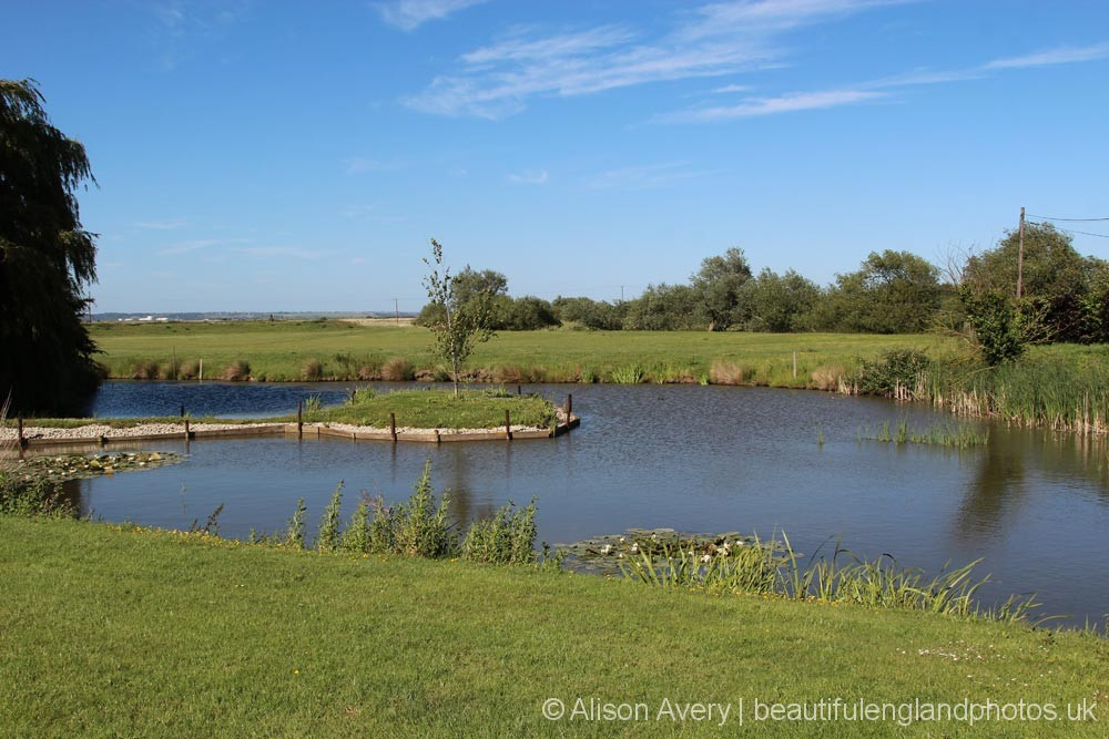 Marshgate Farm and Cooling Marshes, Cooling