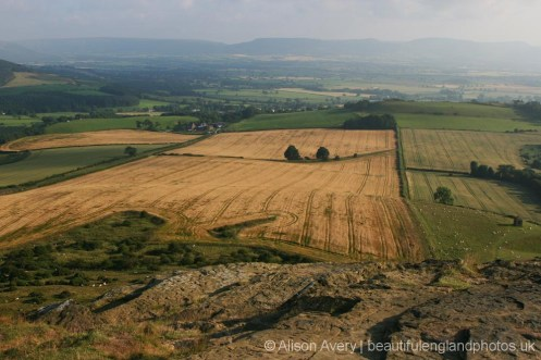 Cleveland Hills, from summit, Roseberry Topping, North York Moors