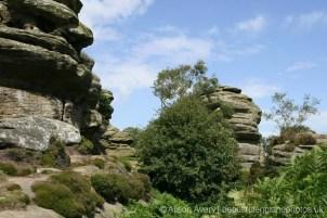 Druid's Castle Rocks, Brimham Rocks