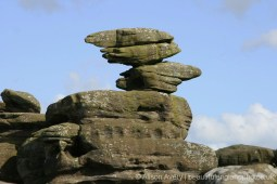 Eagle, Brimham Rocks