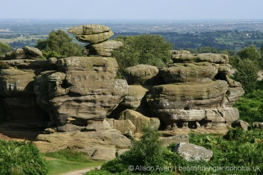 Eagle, from Brimham House, Brimham Rocks