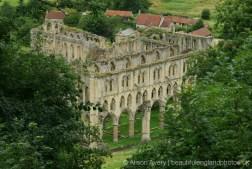 Rievaulx Abbey, from, Rievaulx Terrace