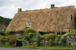 Thatched cottage, Rievaulx