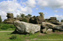 Turtle and Eagle, Brimham Rocks
