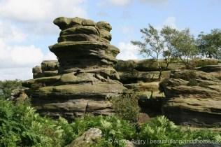 Turtle, Brimham Rocks