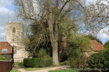 The Oast House and St. Andrew's Church, East Hagbourne