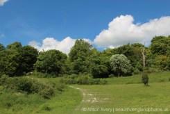Cadsden to Chequers, along The Ridgeway