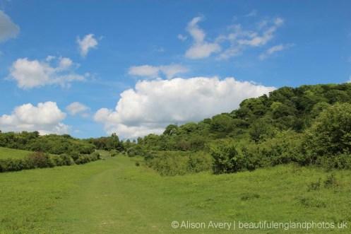 Grangelands Nature Reserve, Cadsden