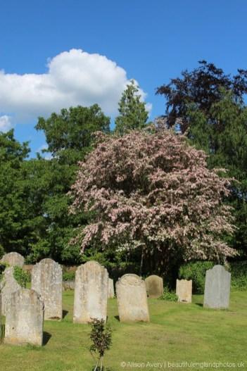 Holy Trinity Churchyard, Cookham