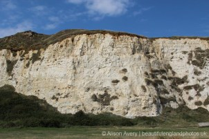 Chalk and flint cliffs, below Castle Hill, Newhaven