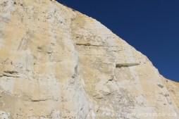 Chalk and flint cliffs, Peacehaven
