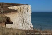 Clifftop, Telscombe Cliffs