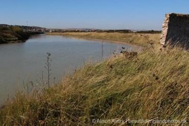 Tidal Creek, Tide Mills, near Newhaven