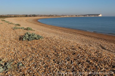 Tide Mills Beach, between Newhaven and Seaford