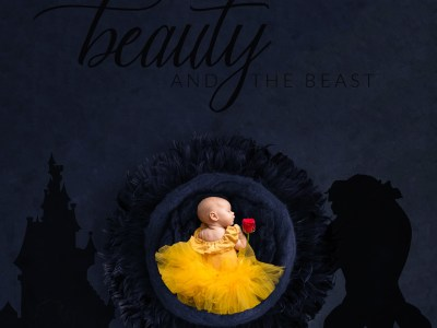 beauty and the beast newborn session