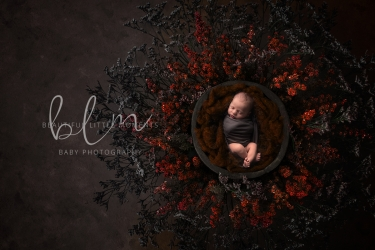 newborn-baby-photography-nest-red-epsom-surrey