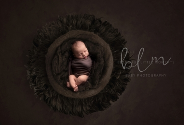 newborn-boy-dark-brown-no-feathers-crop3
