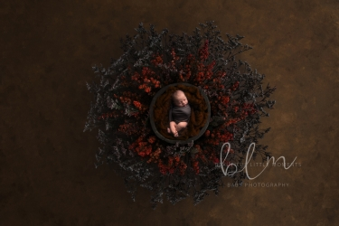 newborn-boy-nest-red