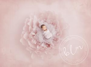 unsettled-baby-newborn-baby-photo-pink-epsom