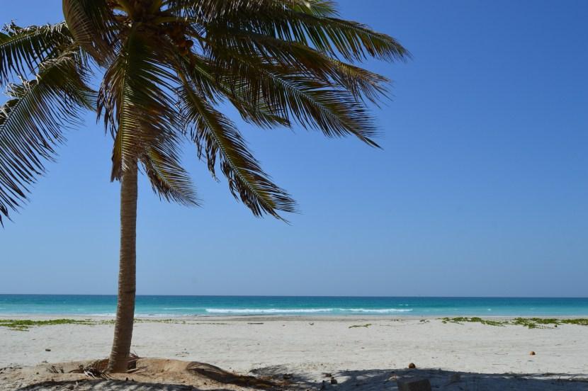 BEAUTIFUL TAQA BEACH