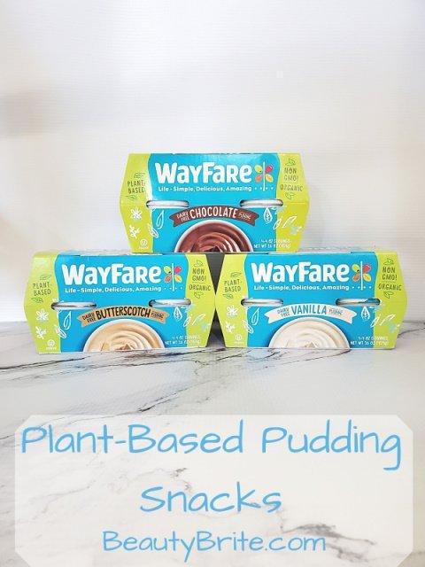 Plant-Based Pudding Snacks