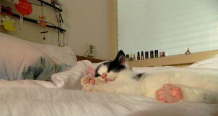 Marie slaapt