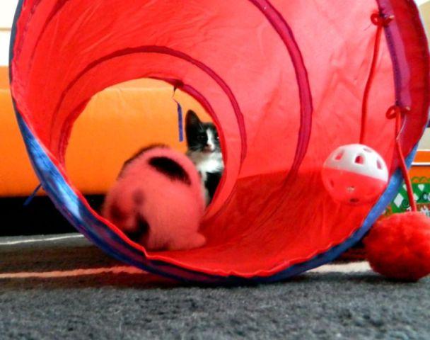 spelen in de tunnel